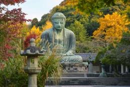 紅葉 鎌倉大仏(高徳院)