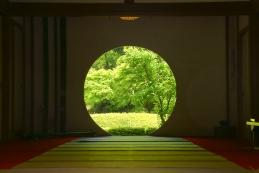 新緑 明月院