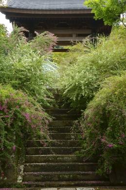 萩 海蔵寺